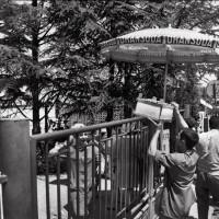Pancaldi occupata giugno 1968 (foto Archivio Pedrelli)